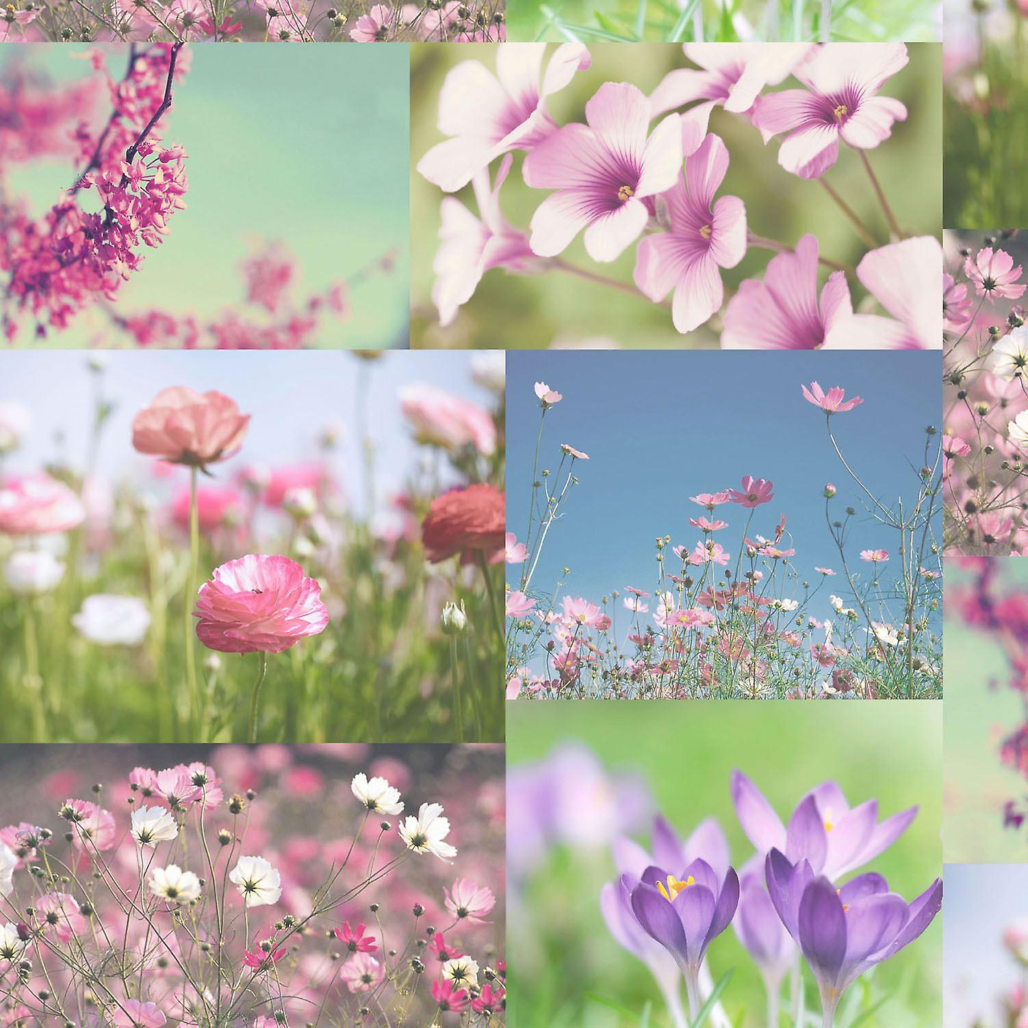 April Wallpaper Heather Pink Floral Flowers Collage Photos Luxury Holden