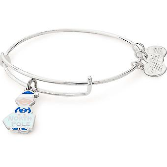 Alex And Ani Elf Charm Bangle - A17EBHOL02SS