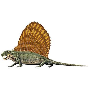 Sticker Sticker Dinosaur Dino Jurassic Deco Child Room Dimetrodon