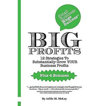 Big Profits by McLay & Adele M.
