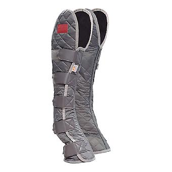 Equilibrium Therapy Hind & Hock Magnetic Horse Chaps
