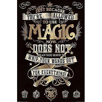 Harry Potter, Maxi Poster - Magic