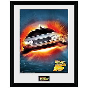 Back to the Future, Plate - 35th DeLorean