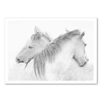 Art-Poster - Horses - marie-anne stas