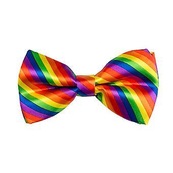 Resori Rainbow rusetti naamiaispuku lisävaruste