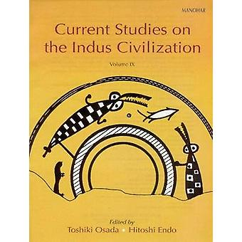 Current Studies on Indus Valley Civilization - Volume 9 by Toshiki Osa