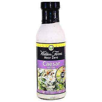Salad Dressings, Caesar - 355 ml.