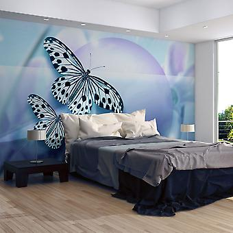Wallpaper - Planet of butterflies