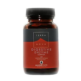 Terranova Digestive Enzyme Complex Vegicaps 100 (T0684)