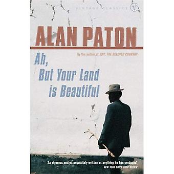 Ah, But Your Land Is Beautiful (Vintage Classics)