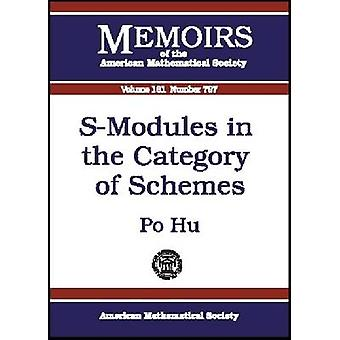 Modules in the Category of Schemes by Hu Po - 9780821829561 Book