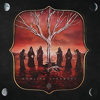 Howling Sycamore - Howling Sycamore [Vinyl] USA import