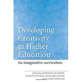 Developing Creativity in Higher Education: The Imaginative Curriculum
