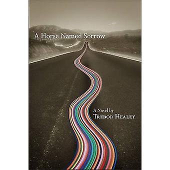 En häst som heter sorg av Trebor Healey - 9780299289706 bok