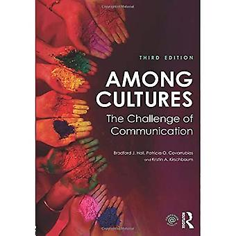 Among Cultures: The Challenge of Communication