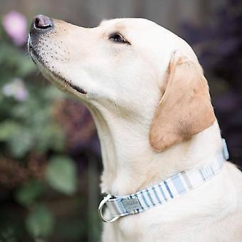 Hundehalsband - Chambray