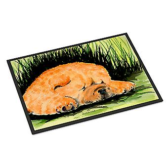 Carolines Treasures  SS8525JMAT Chow Chow Indoor or Outdoor Mat 24x36 Doormat