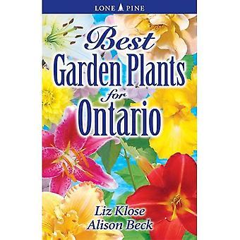 Beste Garden Plants voor Ontario