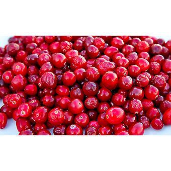 Organic Cranberry Splash Mix -( 12.98lb Organic Cranberry Splash Mix)