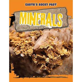 Minerals by Richard Spilsbury - 9781499408195 Book