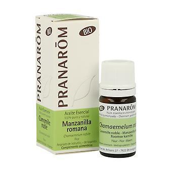 Roman Chamomile Flower Essential Oil Bio 5 ml of essential oil