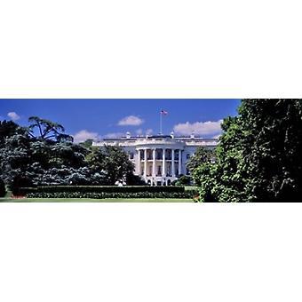 Фасад здания белый дом Вашингтон Округ Колумбия США плакат печать правительства