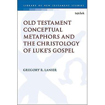 Gamla testamentets konceptuella metaforer och Luke&apos's evangeliums kristusologi (Biblioteket i Nya testamentets studier)