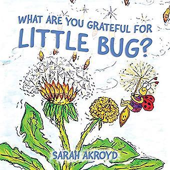 Was sind Sie dankbar für Little Bug?