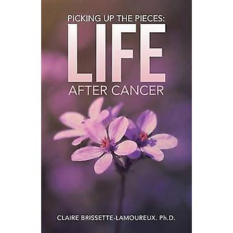 Picking Up the Pieces - Life After Cancer by Claire Brissette-Lamoureu