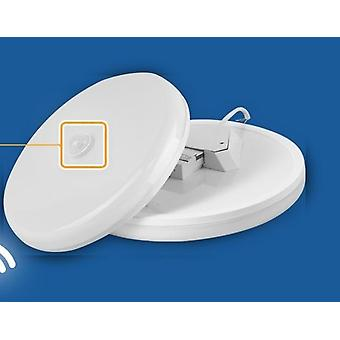 Motion Sensor Led Ceiling Light Fixtures Surface Mounted Ceiling Lamp For Home