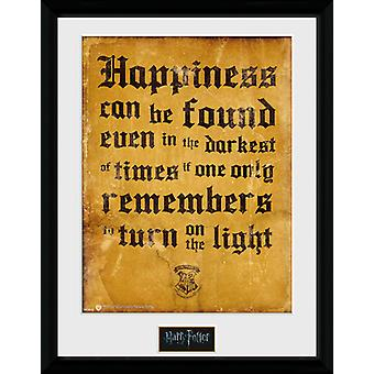 Harry Potter onnea voi olla kehystetty keräilijä tulostaa