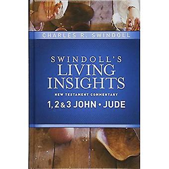 Innsikt på 1, 2 & 3 John, Jude