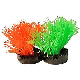 Sydeco Sunny Plants (Poissons , Décoration , Plantes artificielles)