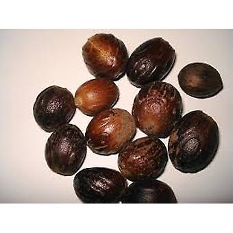Nutmeg - Whole-( 5lb )
