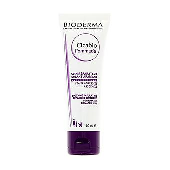 Cicabio Soothing Insulating Repairing Ointment 40 ml of cream