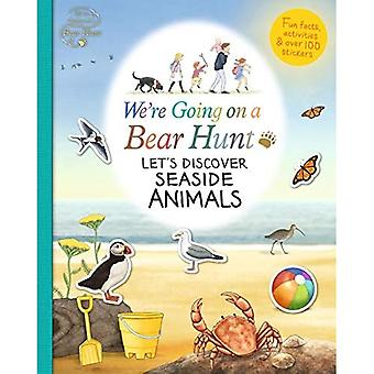 Let's Discover Seaside Animals - We're Going on a Bear Hunt