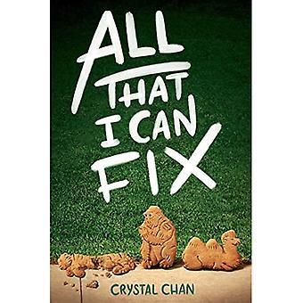 Alles wat kan ik repareren
