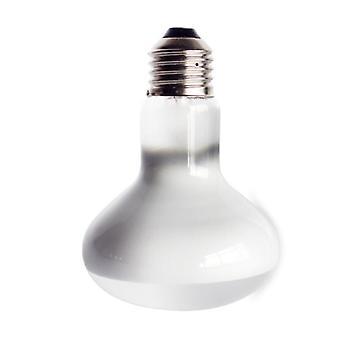 مصابيح الزواحف، سلحفاة لمبة البَدَر المصابيح الخفيفة فوق البنفسجية، مصباح التدفئة، البرمائيات