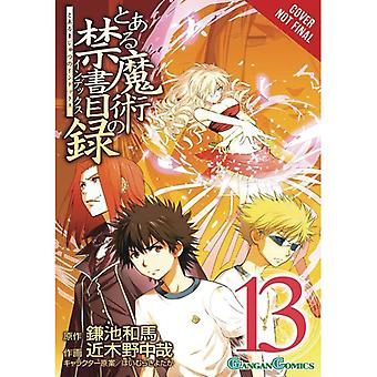 Certain Magical Index: Volume 13