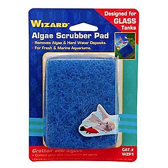 """Penn Plax Wizard Algae Scrubber Pad för glas akvarier - 3""""L x 4""""W - 1 räkning"""