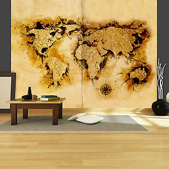 Wallpaper - Gold-diggers' map of the World