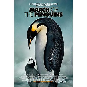 مسيرة من البطاريق (واحد من جانب العادية) (2005) ملصق السينما الأصلي