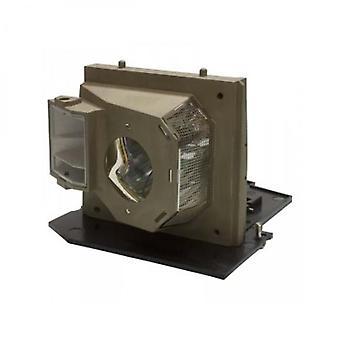 Lampada per proiettori di sostituzione potenza Premium per Optoma BL-FU300A
