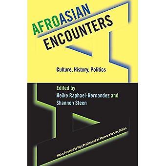Encuentros afroasicianos: Cultura, Historia, Política