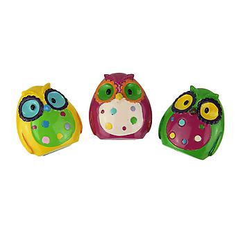 Set of 3 Whimsical Colorful Owl Clip Magnets