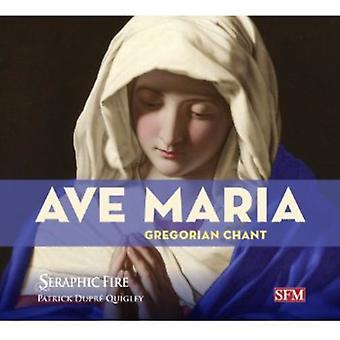 Dunstaple/Guerrero/Palestrina/Power/De Prez/Luis D - Ave Maria: Gregorian Chant [CD] USA import