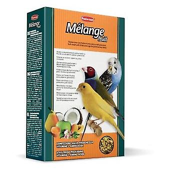 Padovan Fruit Mélange Think (Birds , Hand Rearing)