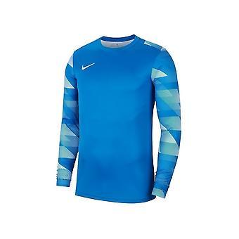 Nike Dry Park IV CJ6066463 training all year men sweatshirts