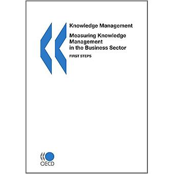 Measuring Knowledge Management in the Business Sector - First Steps by