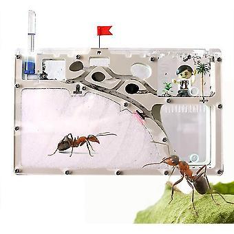 Άμμος Ant αγρόκτημα ακρυλικό διαφανές μυρμήγκι κάστρο φωλιά 360 βαθμό πανοραμικό Ant Εργαστήριο έντομο κουτί